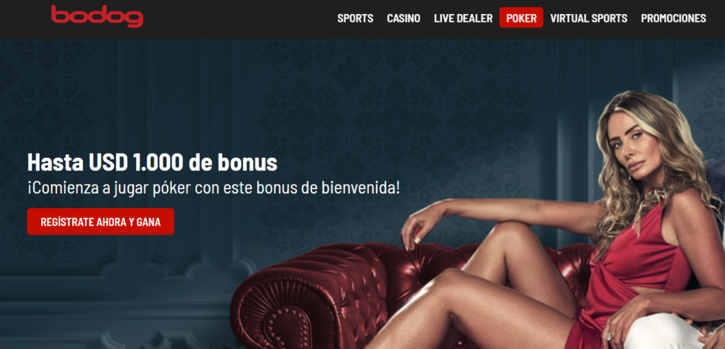 bodog casino poker